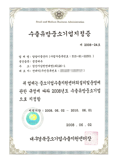 Certificate designating promising export small-medium company